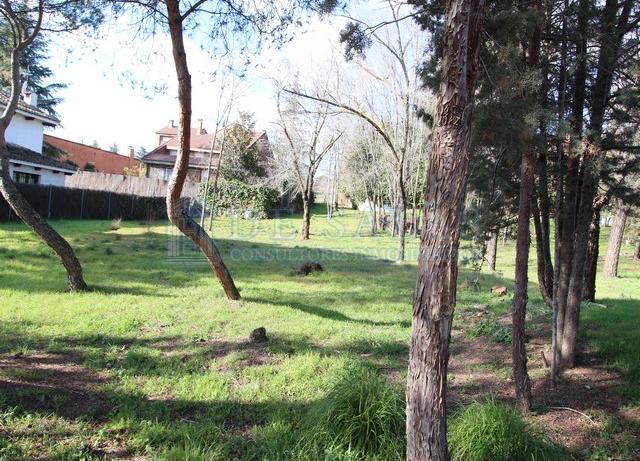 938 -  Parcela Fuentelarreina