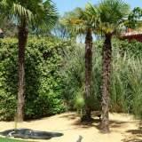 Jardin 1 Maison El Encinar de los Reyes
