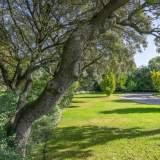 Jardín-30 Maison La Moraleja