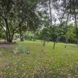 Jardín Maison Conde de Orgaz