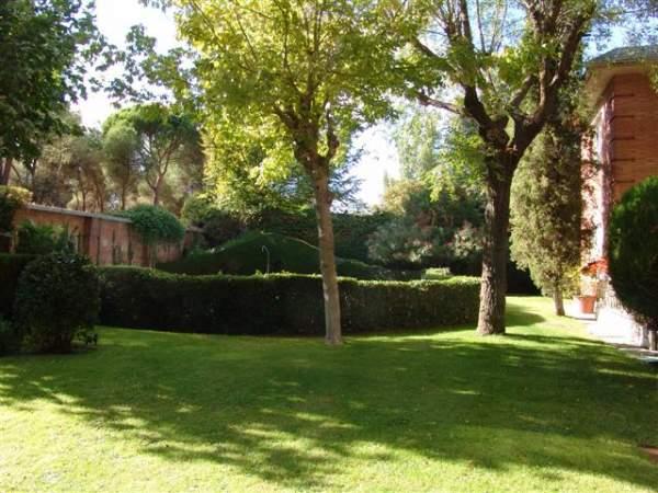 Jardín Piso Puerta de Hierro