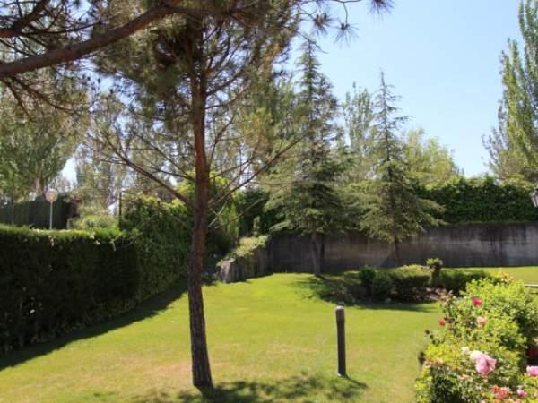 193 - Jardin Maison La Moraleja