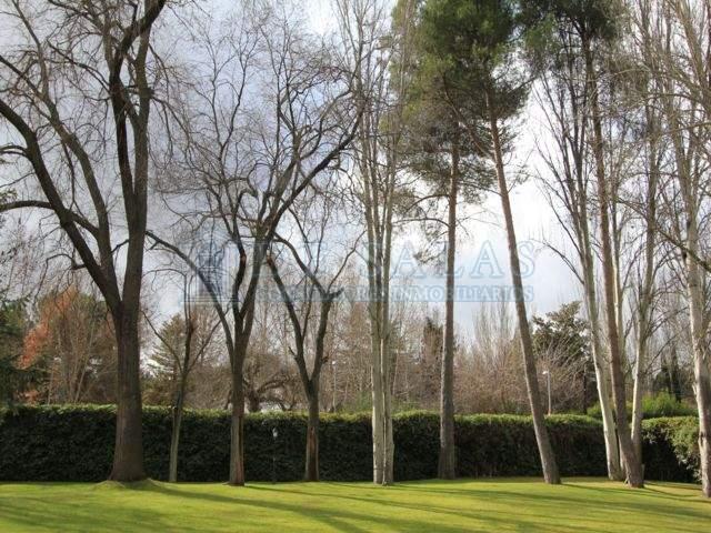 1222 - Jardin Maison Fuente del Fresno