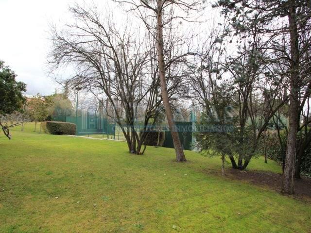 1222 - Jardin- padel Maison Fuente del Fresno