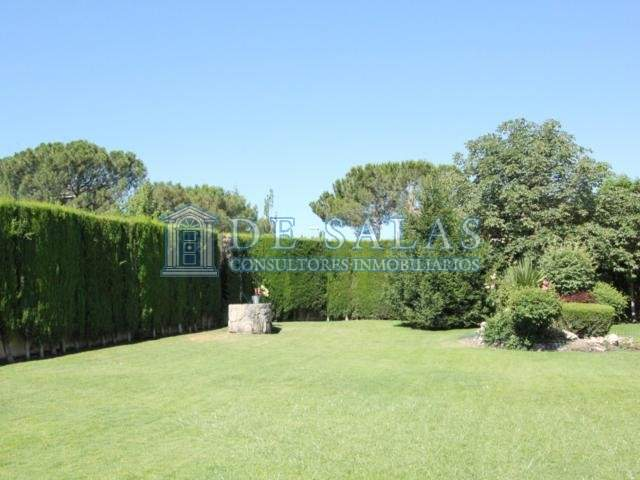 1174 - Jardin 1
