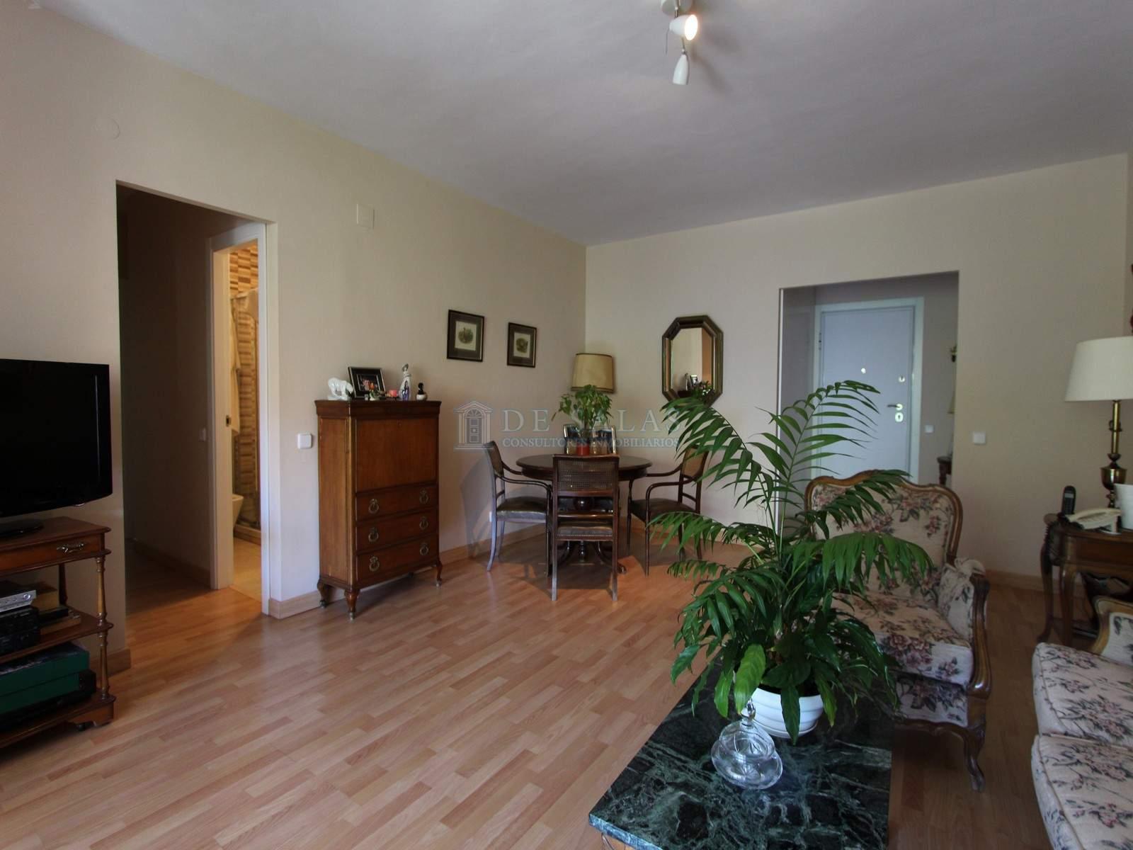 Salón (3) Flat Fuentelarreina