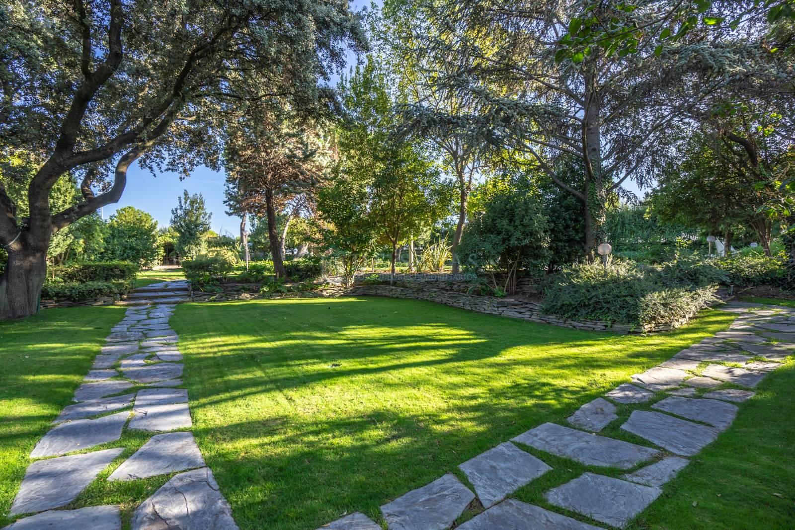 Jardín-18 House La Moraleja