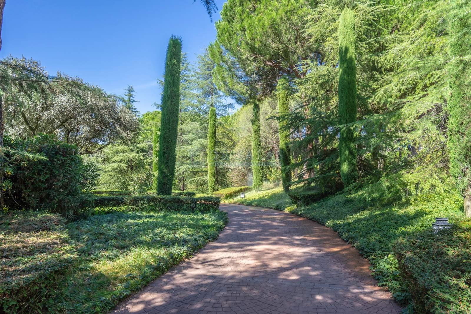 Jardín-43 Chalet La Moraleja