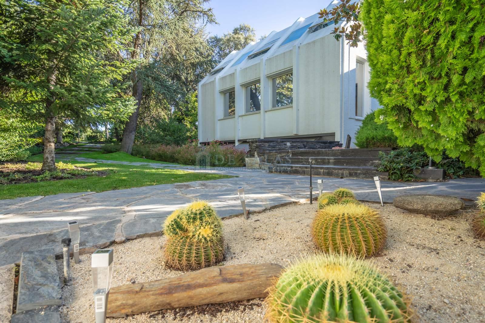 Jardín-17 House La Moraleja