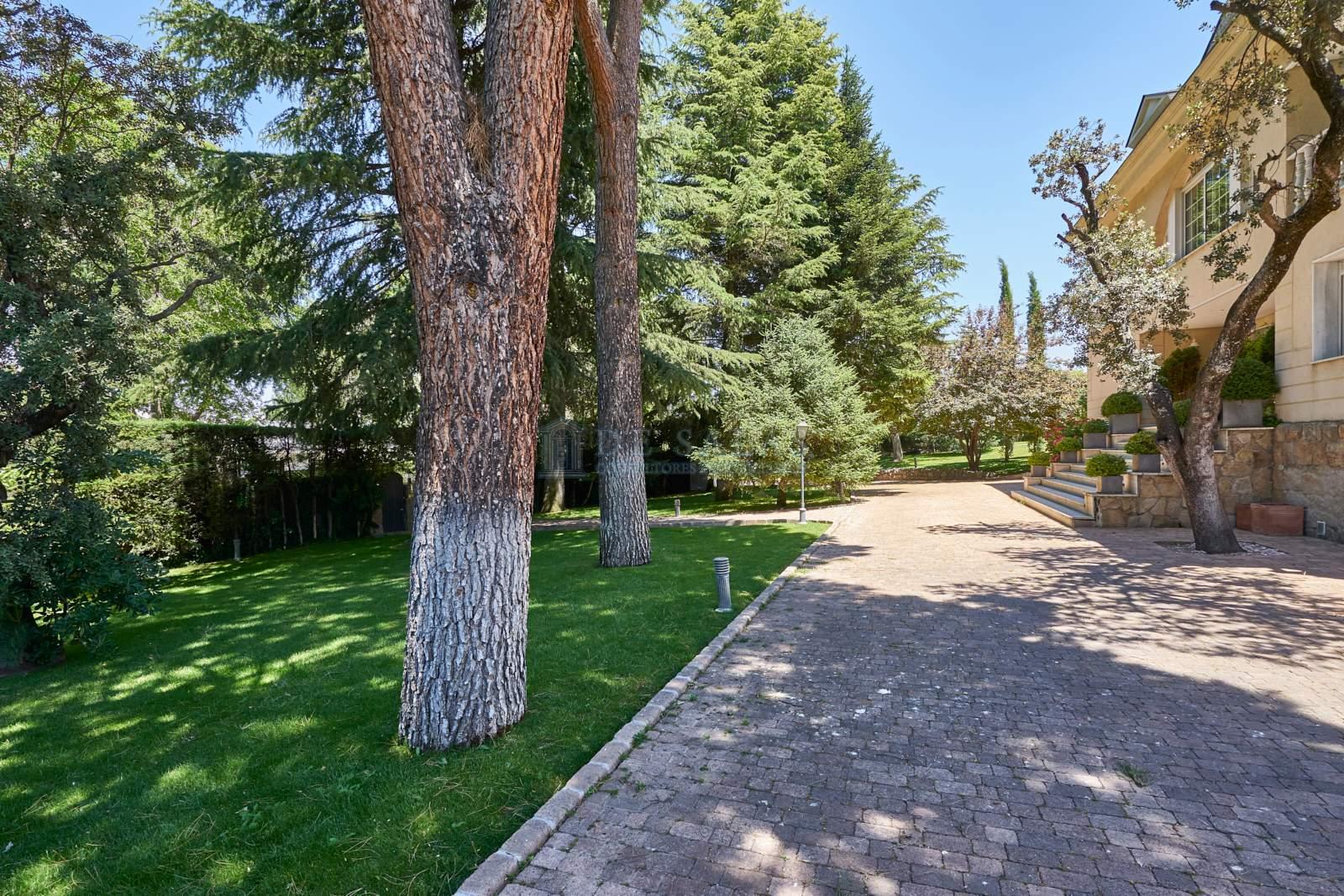 Jardín-0020 Chalet La Moraleja