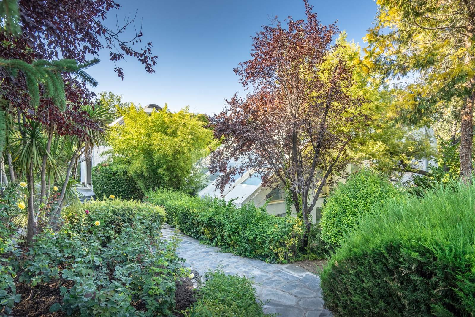 Jardín-21 House La Moraleja