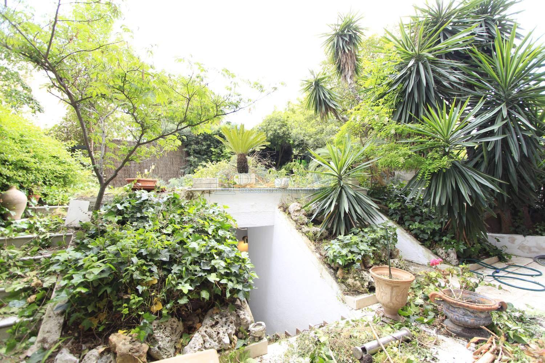 Jardín-_MG_9532